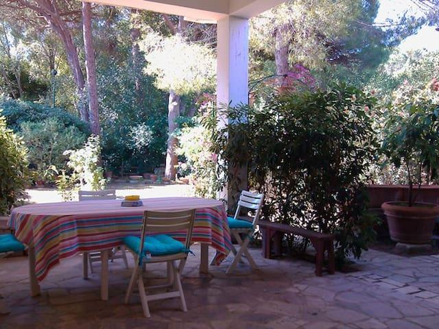 Veranda e giardino, mare e pineta - Castiglione della Pescaia - Apartamento