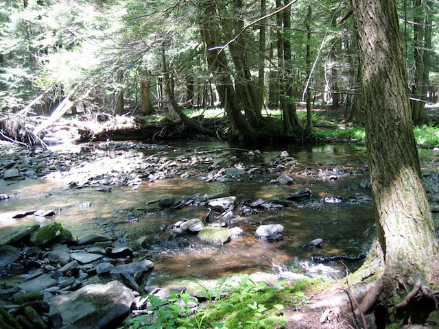 Woodland retreat in the Poconos - Milford - Haus