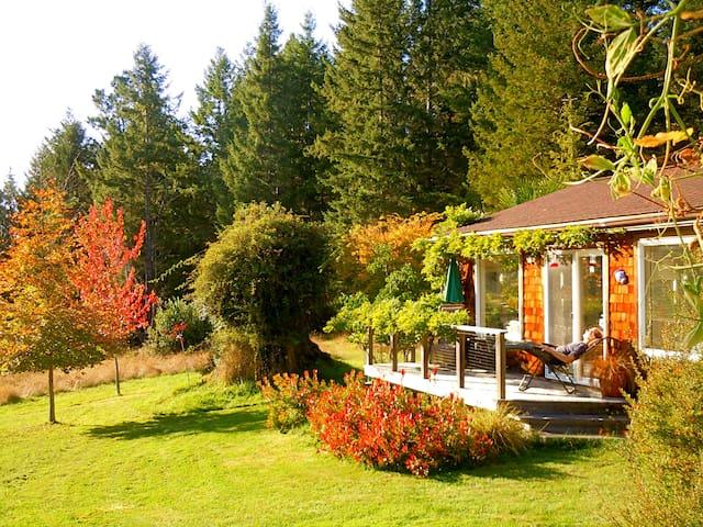 Quiet Meadow Cottage near Mendocino & ocean shores - Albion