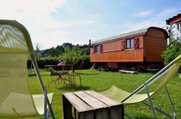 Gipsy caravan near Cluny, Burgundy - Dompierre-les-Ormes - Camper