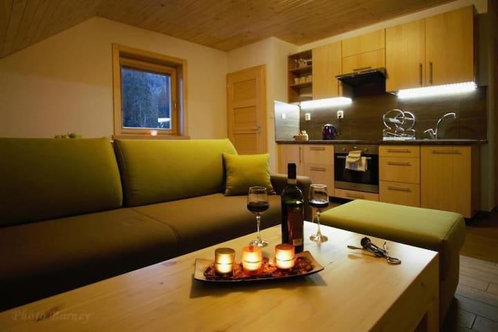Apartment #3 Kongen - Jasná Lúčky - Demänovská Dolina - Casa