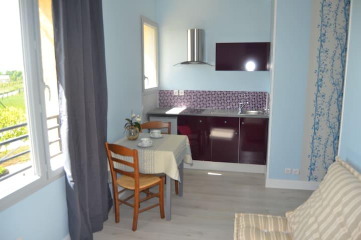 Studio ageliki 1 - Flaugeac - Apartamento