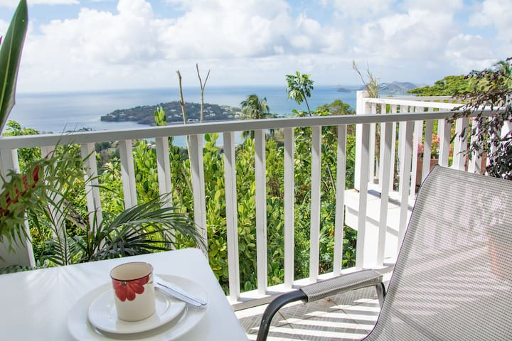 The Morne Seaview Apartment 2 - Mount Fortune