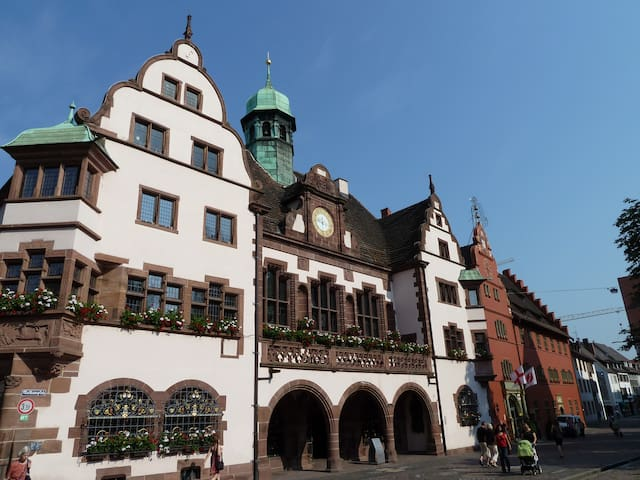 At historic Townhallsquare Freiburg - Friburgo - Departamento