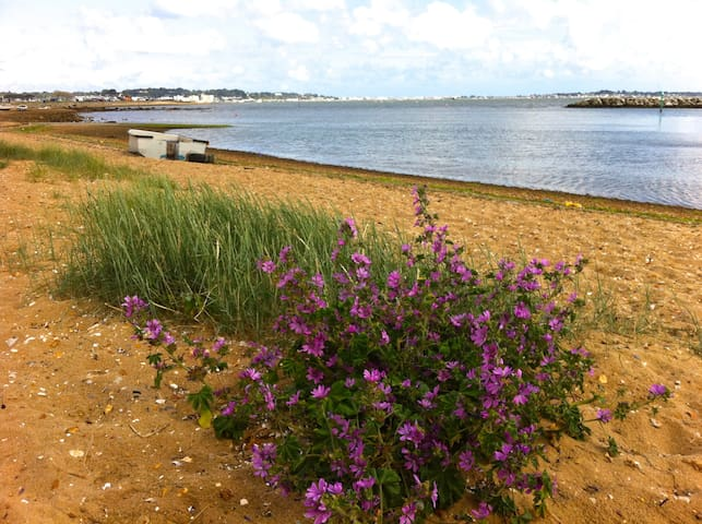 2 minutes from Harbourside Park - Poole - Hus