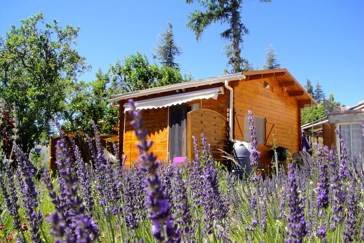 Charming chalet in Provence - Cruis - Apartemen