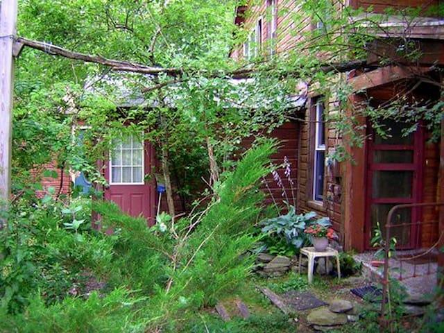 1 Room Mini Studio Apartment Rustic - Hurleyville - Hus