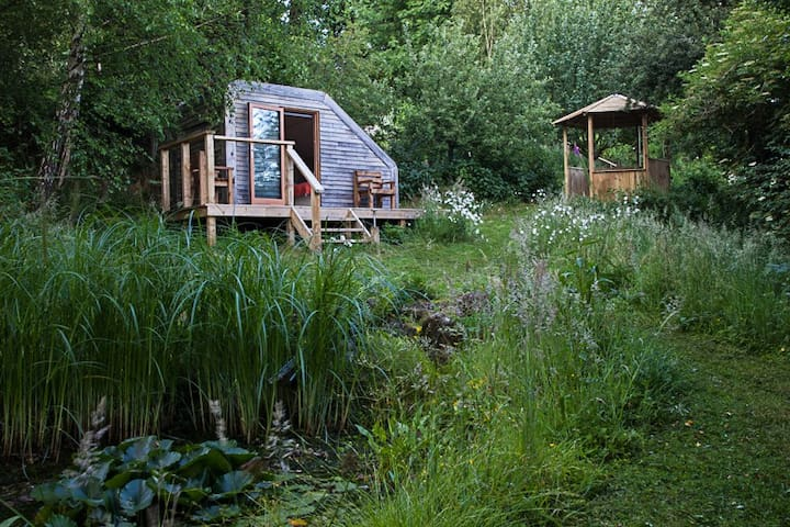 Eco Glamping Pod in Wildlife Garden - Shaftesbury - Cabane