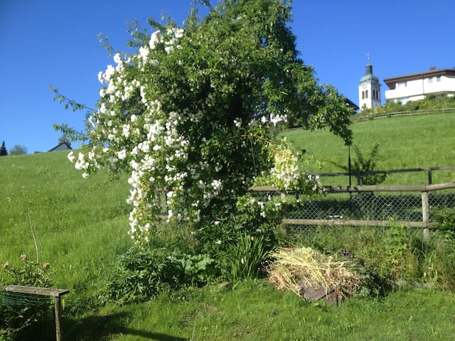 Gartenstudio in Appenzellerhaus - Speicher - Hus