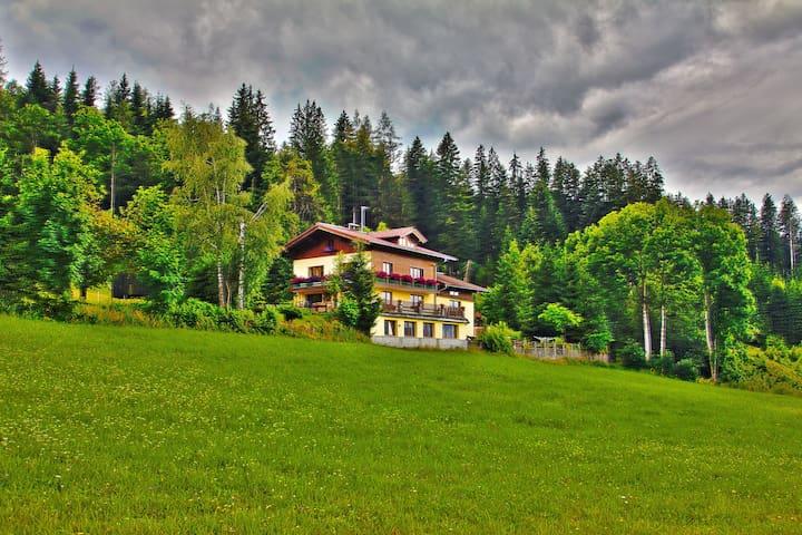 Austrian Alps Apartment - Altenmarkt im Pongau - Apartemen