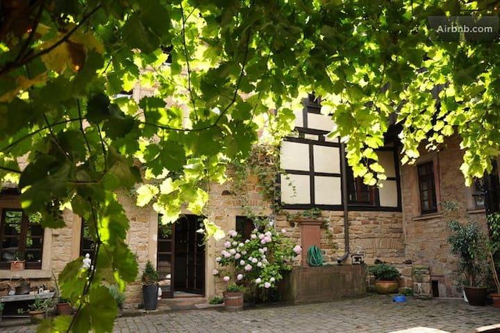 Erleben Sie die charmante Pfalz - Neustadt an der Weinstraße - Hus