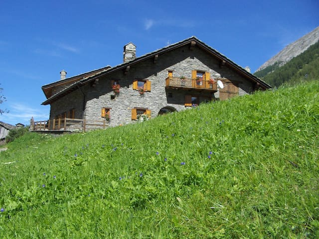 Studios in the Alps - Creton - Daire