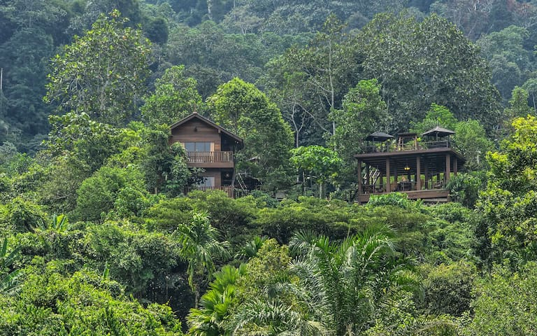 Templer Park Rainforest Retreat - Villa - ラワン - 別荘