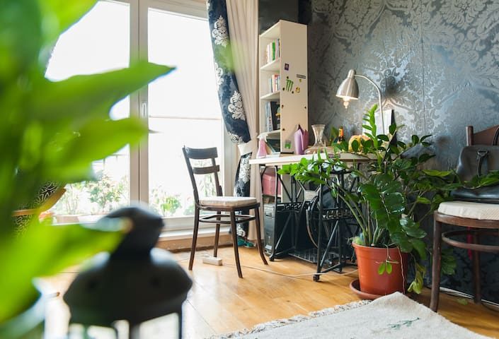 Nice room near the SZIGET FESZTIVAL - Budapest III.district - Appartement