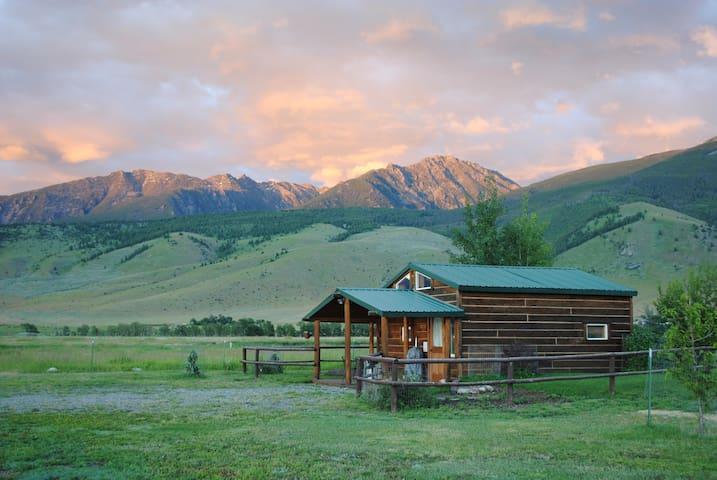 Dexter Peak cabin, elegantly rustic near YNP/Chico - Livingston - Houten huisje