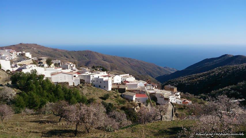 Alojamiento Rural Al sur de Granada - Sorvilán - Talo
