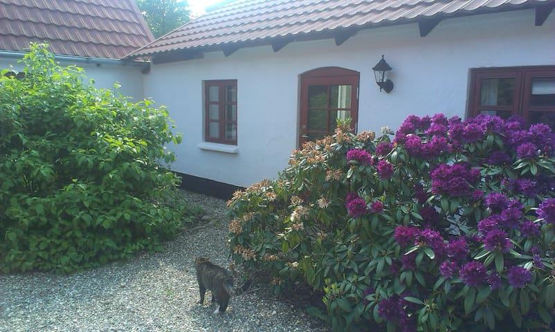 Stay at cosy Danish Vineyard - Viborg - Oda + Kahvaltı