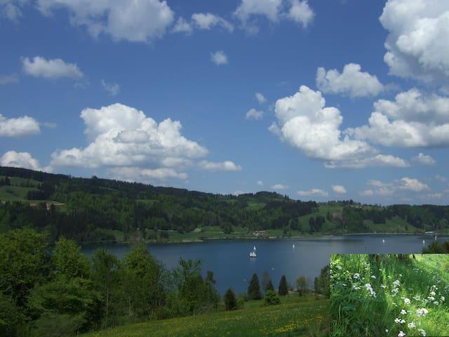 Holidays on the farm on the mountai - Immenstadt - Leilighet