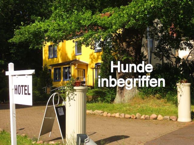 Natur pur, Hund OK, Zimmer Du, WC, Sat-TV, WLAN - Sternberg - House
