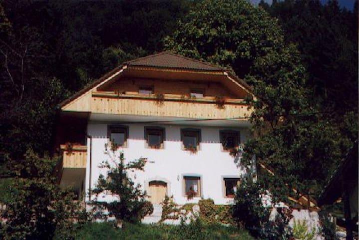 Apartment house Gornik - Poljane nad Škofjo loko - Bed & Breakfast