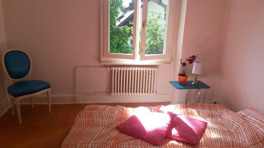 chambre dans grande maison  - Plan-les-Ouates - Huis