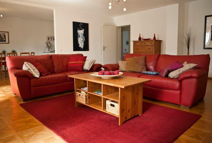 Appartamento Dario ( Ca` del Soo ) - Muralto - Leilighet