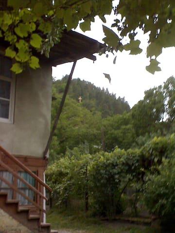 Borjomi_Likani homestay - Likani - Huis