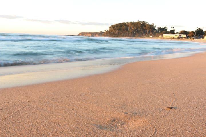 Surfrider 11 - Beachside Paradise  - Mollymook Beach - Lägenhet