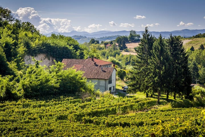 Charming countryhouse and vineyards - Strevi - Hus