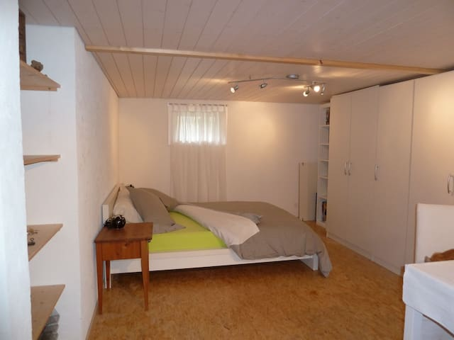 Large room with own Bathroom - Arlesheim - Leilighet