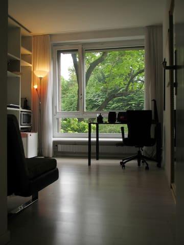 Sunny, cozy studio in Basel City - バーゼル - アパート