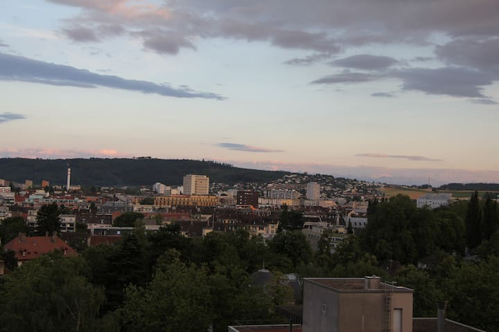Peaceful room with a view - Biel/Bienne - 一軒家