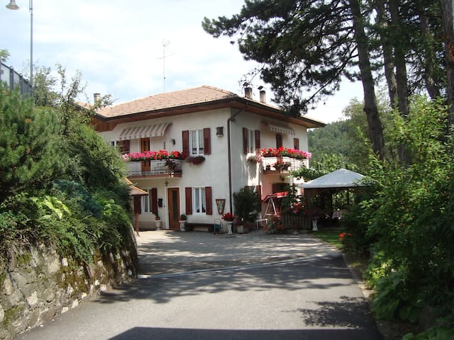 Small apartment for great holiday! - Sanzeno - Daire