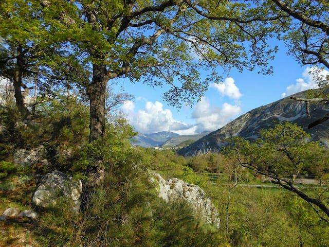 Beautiful Gite in Provence - Gréolières - Daire