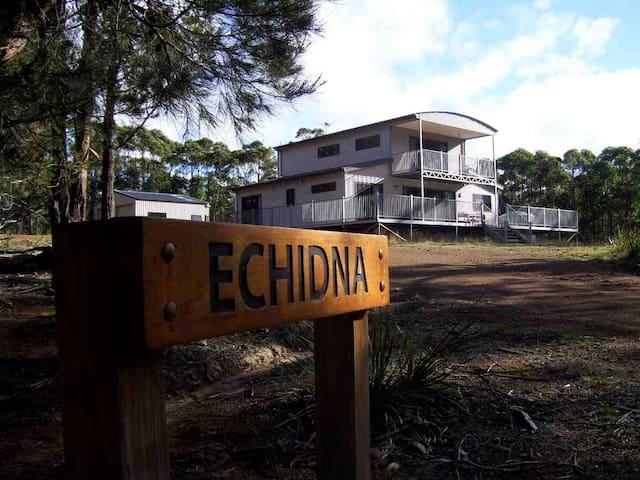 'Echidna' on Bruny Island - Barnes Bay, North Bruny Island - Huis