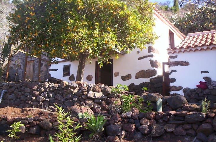 Finca in Spain to rent - Puntagorda - Hus