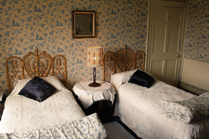 Twin Room in Georgian Quaker House - Ballitore - Bed & Breakfast