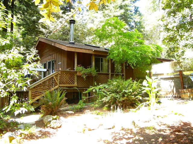 The Petit Cottage in the Redwoods - Gualala - Casa