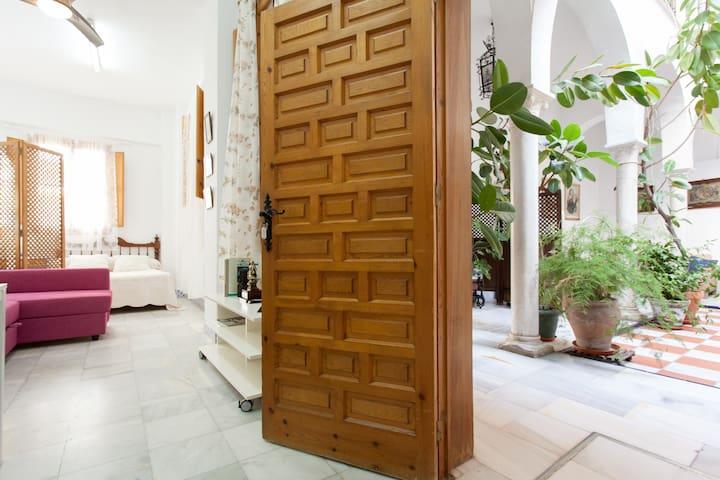 """Apartamento """"patio de los libros"""" - Seville"""
