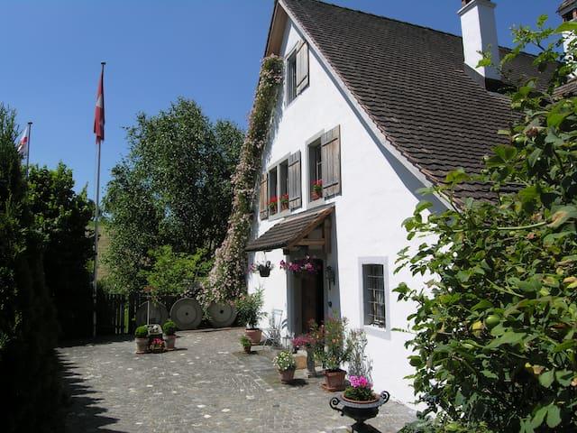 Country Mill easy reach of Zurich - Schönenberg - Bed & Breakfast