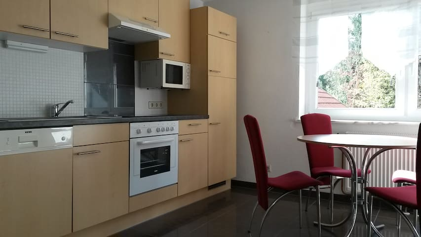 spacious flat at the lakeside - Sekull - Appartement