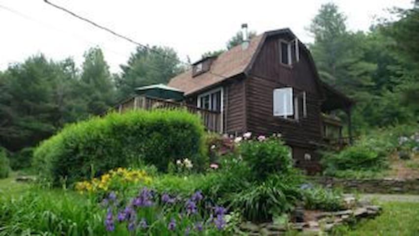 The Herbal Bear Catskill Cabin - Grand Gorge - Houten huisje