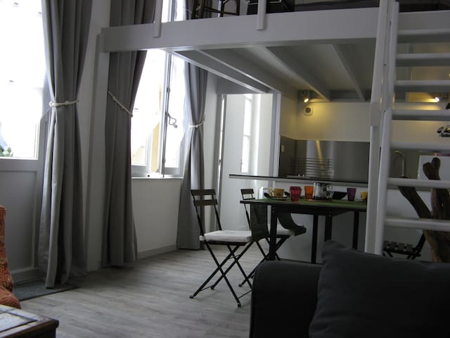 Tours Centre Halles-Saint Martin - Tours - Apartamento