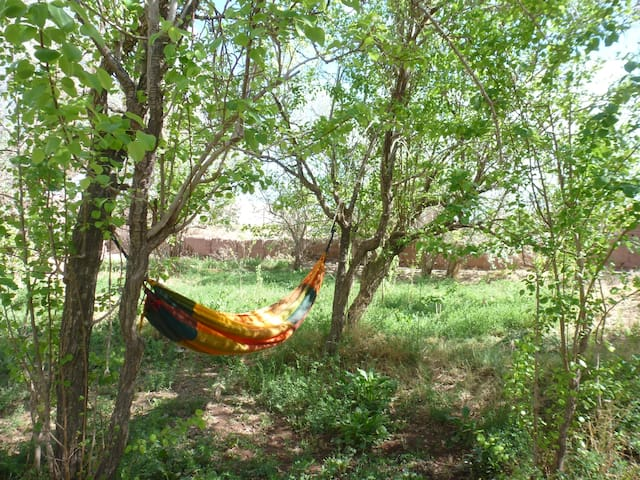 Comfort within the town (matri) SPA - San Pedro de Atacama