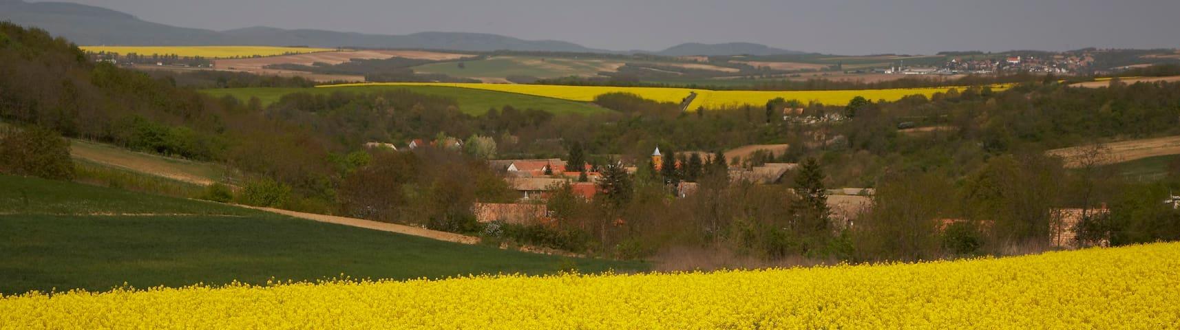 Romantic farm-house in tiny village - Erdősmárok - Casa