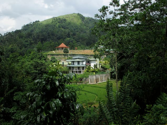 The Paddyfield Hideaway and Octagon - kANDY - Bed & Breakfast