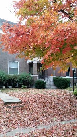 Cozy Basement Apt in Heart of StL - St. Louis - Lägenhet
