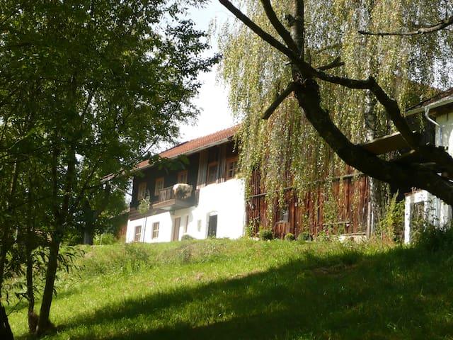 Romantische Wohnung auf altem Hof - Konzell - Casa