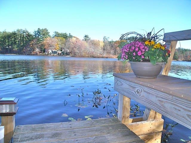 Lakeside  Wooded Retreat - Kingston - Apartmen