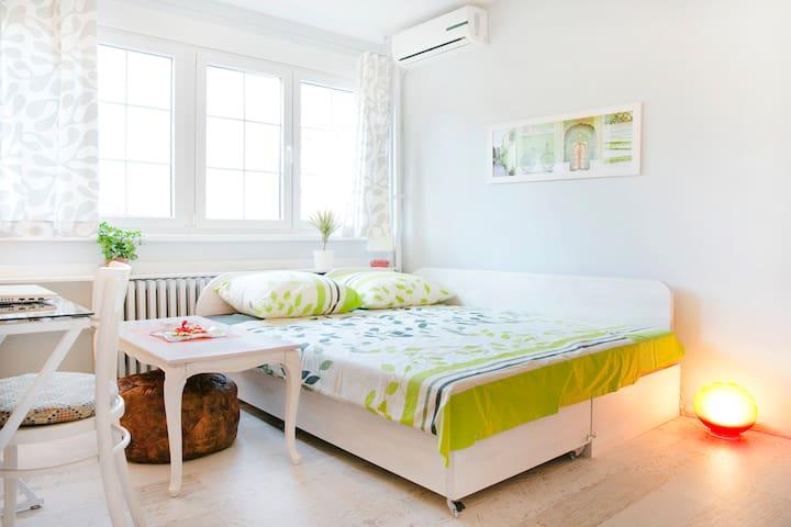 Fresh&Exciting Near the Danube    - Belgrado - Apartamento